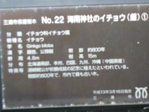 sP1020981